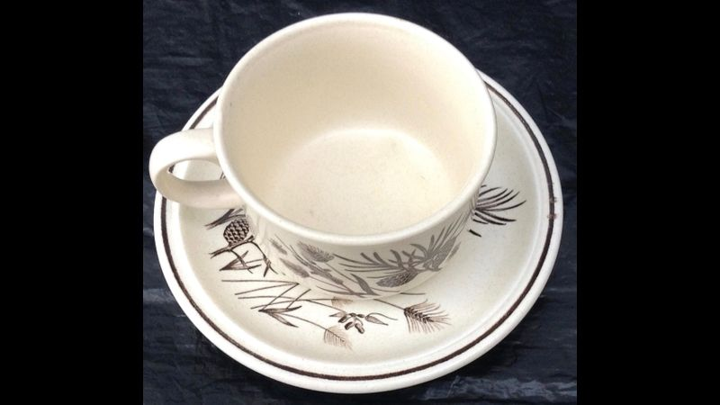 Example of a suitable Teacup (Not Supplied)