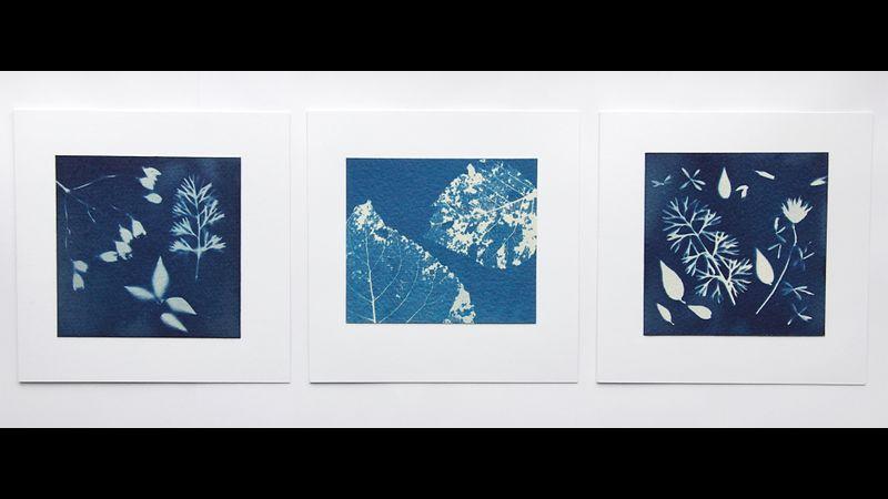 Set of Three Handprinted Cyanotype Greetings Cards: 'Leaves'