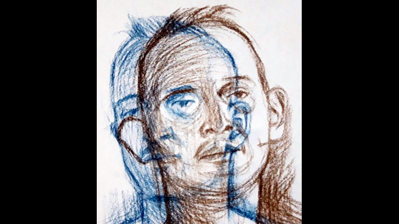 The Drawn Portrait