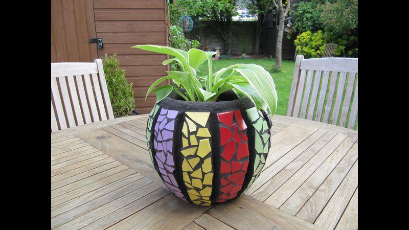 Vicky's pot
