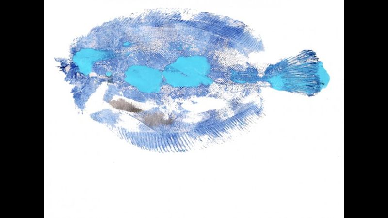 Gyotaku blue sole by Deb Withey