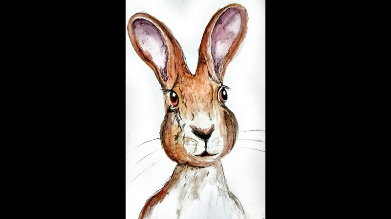 Rabbit from Childrens Book Illustration short course