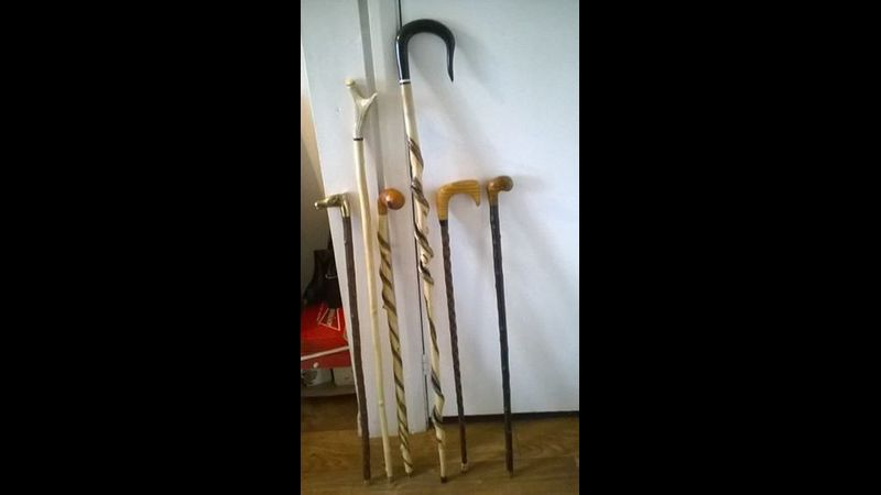 Walking Stick Examples