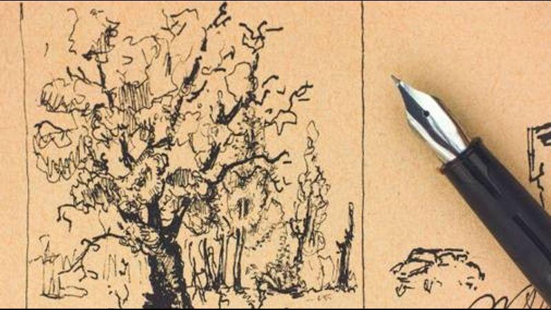 Pen & ink drawing - next step in Exmoor