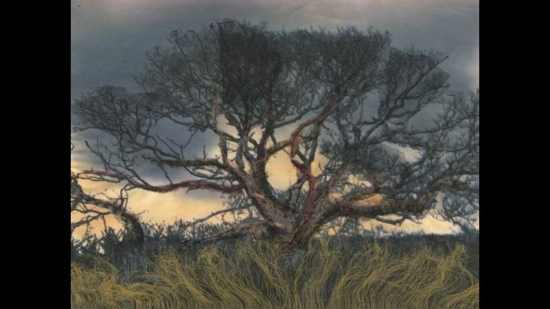 Purbeck tree- Imogen Bittner