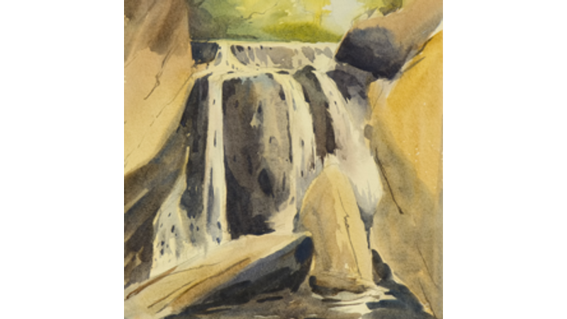 Watercolours for beginners at Margam Discovery Centre