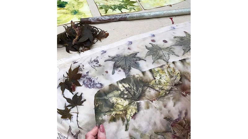 Paper printing with Iron mordant