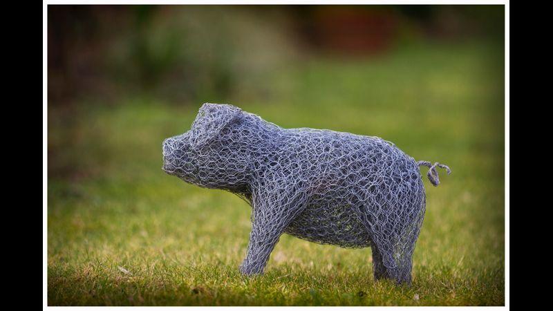 Wire pig sculpture