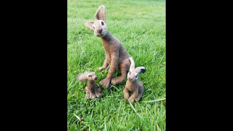 Family of Hares