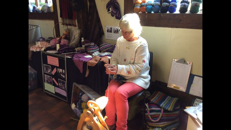 Fiona spinning on her Ashford Joy wheel
