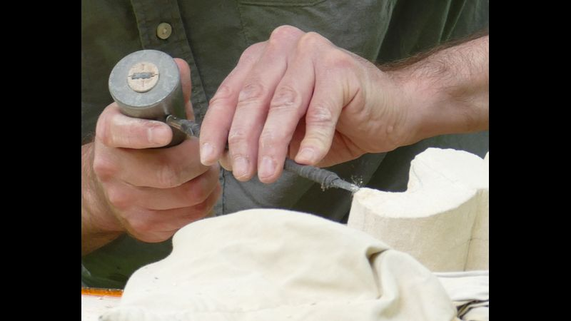 carving a seahorse
