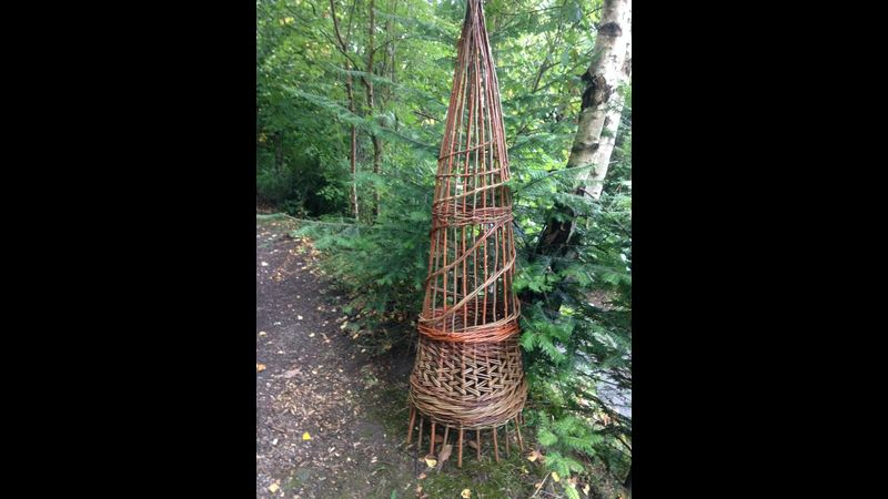 Decorative garden wigwam, made using different willow varieties and different basketry weaves.