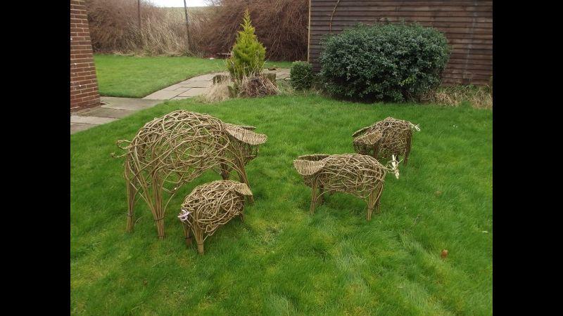 Willow Weaving Piglets