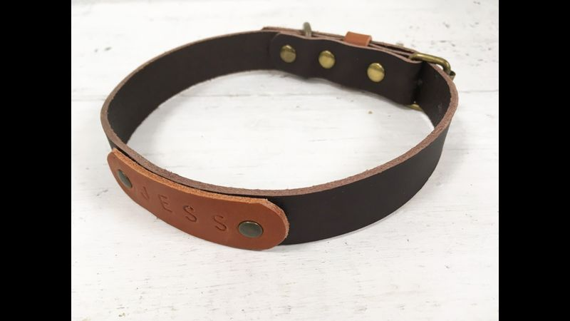 Vegtable tan leather dog collar with embossed name tag