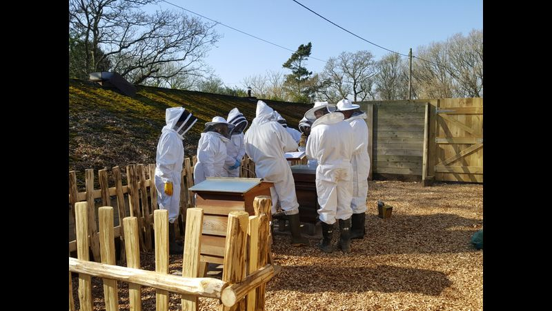A visit to our Apiary