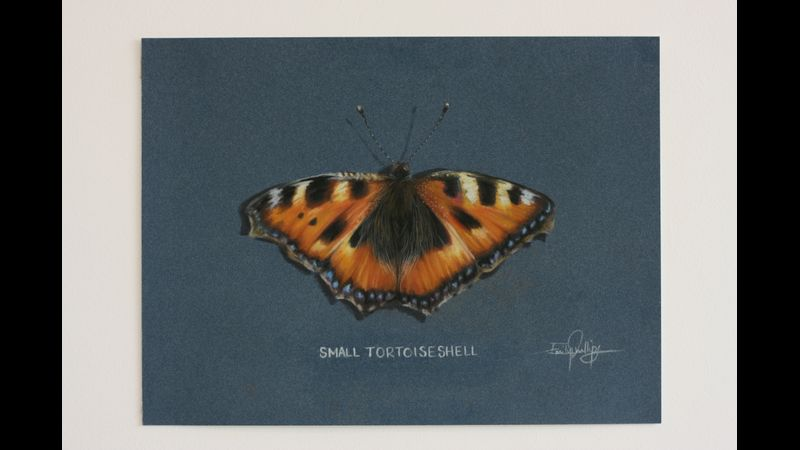 Small Tortoiseshell Butterfly which we will be creating on the day