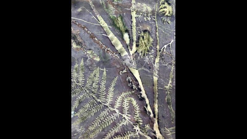 Delicate leaves create a beautiful natural design