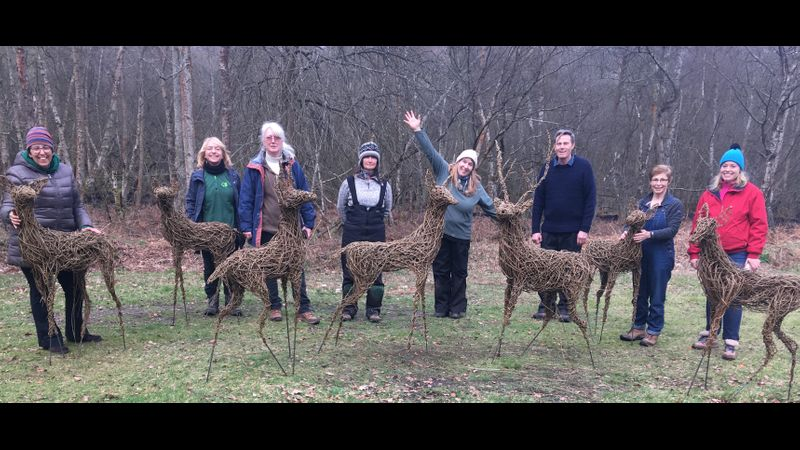 Two day wollow deer students and their work