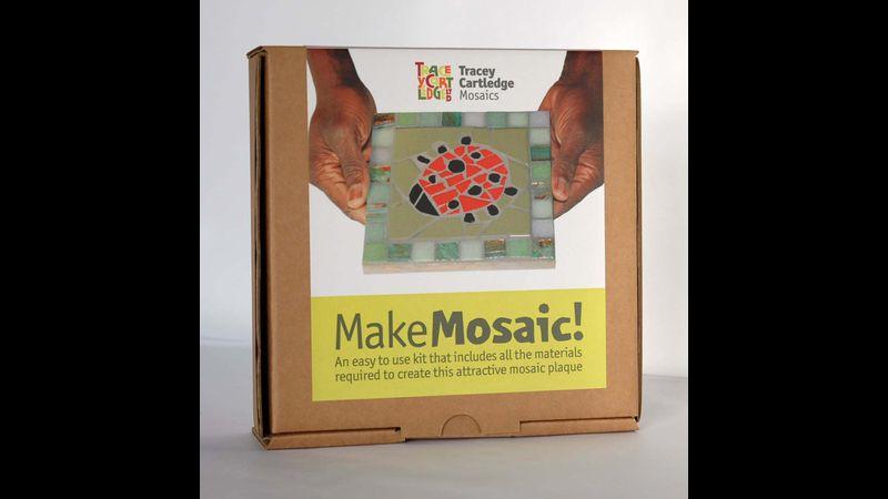 Ladybird, Beginners Mosaic Kit