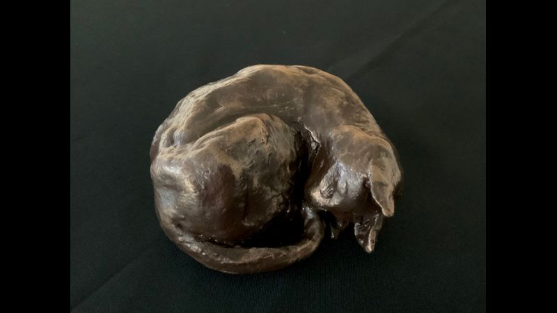 Sleeping Cat - smooth finished