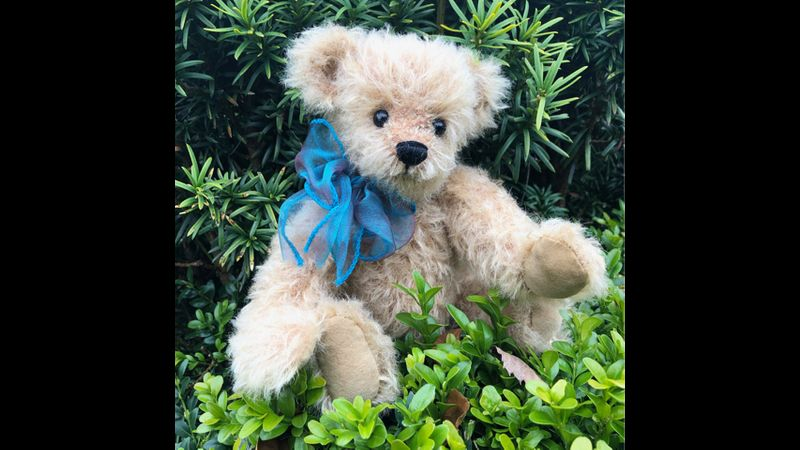Milo, Traditional Mohair Teddy