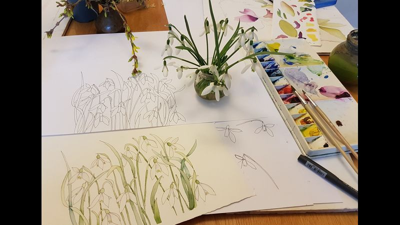Students watercolour snowdrops from Watercolour Flower class at Cambridge Art Makers