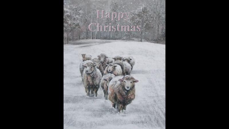 Soft Pastel Sheep