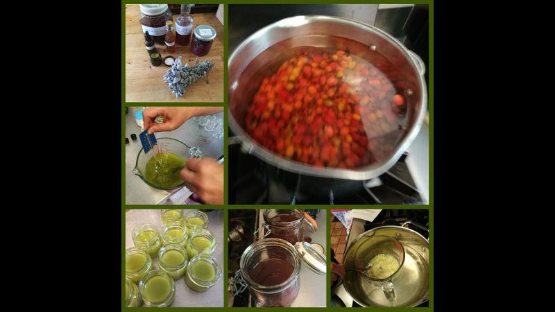 Autumn herbal remedies at Acton Scott