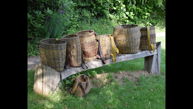 Willow Basketry with Annemarie O'Sullivan