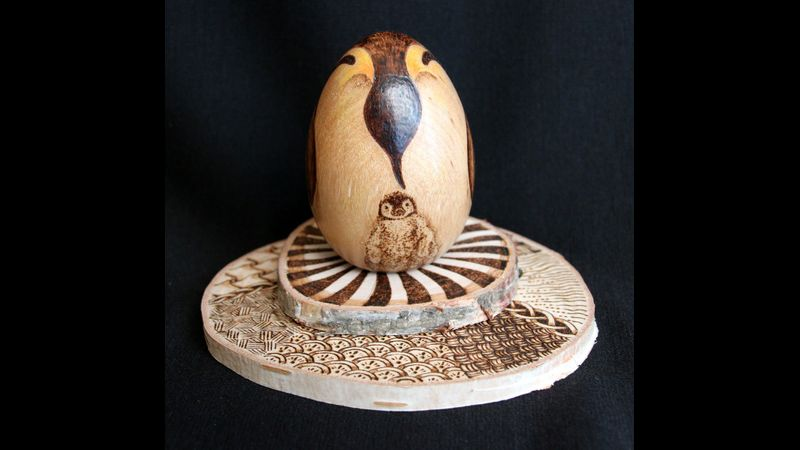 3D pyrography with colour workshop with Susan Robey