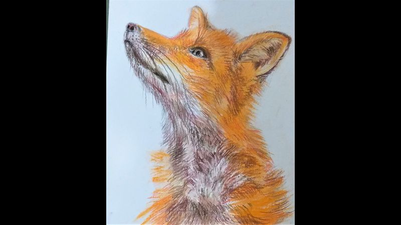 Introduction to soft pastels online art course with live tuition.