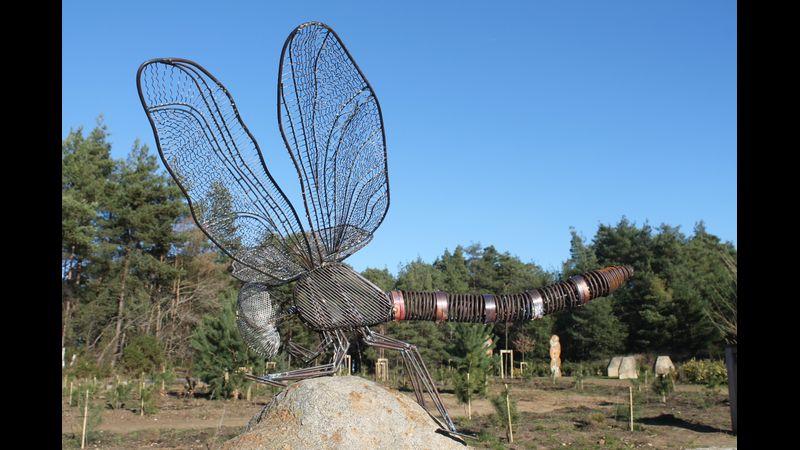 1.5 meter dragon fly