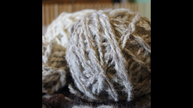 Learn to plant dye yarn at Kate Humble's working farm, Humble by Nature in Monmouthshire