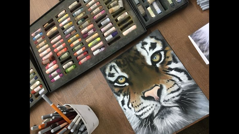 Wildlife pastel painting workshop