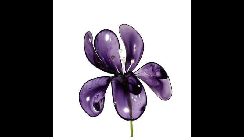 Acrylic flowers - everlasting Iris available to make in different colours