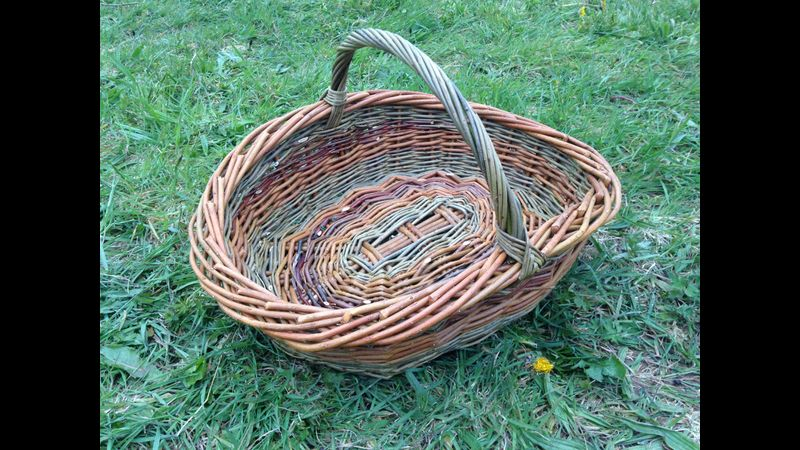 Willow trug with willows harvested from my patch