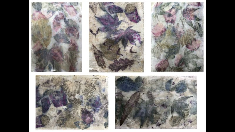 Eco printing with leaves and petals on silk and cotton