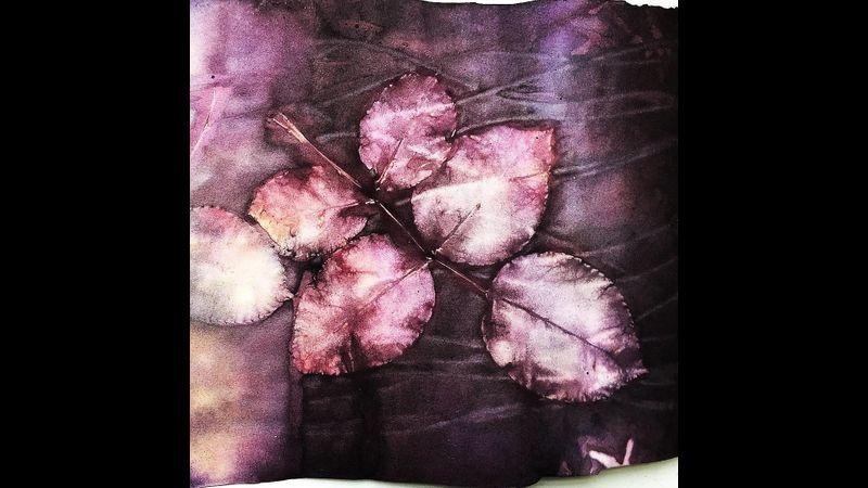 Rose leaves on Sapan wood natural dye