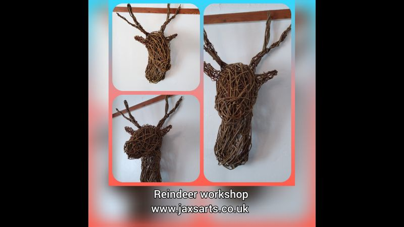 Willow reindeer/ stag head  images