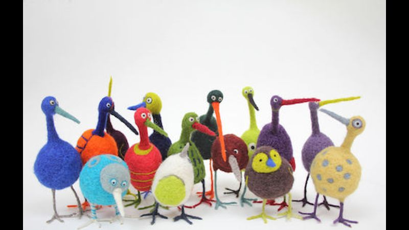 A squawk of quirky birds!