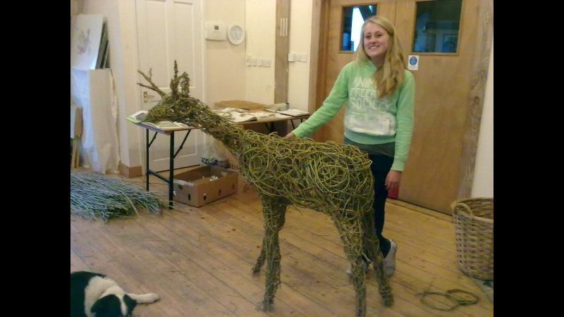 willow deer woven with a group at Carymoor environmental centre, Somerset.