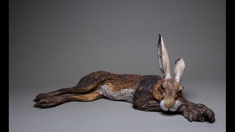 Resting Hare by Jeremy James