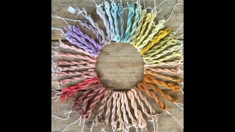 A colour wheel of naturally dyed yarn