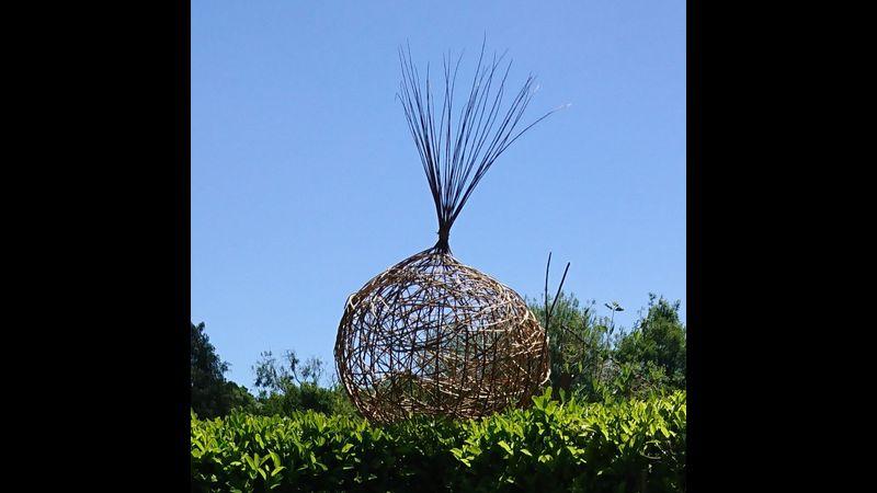 The Sculptural Onion