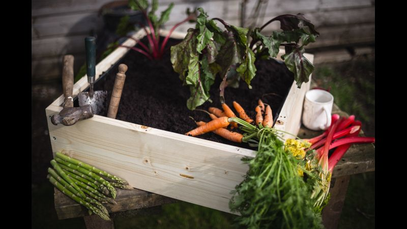You will make your own veg planter / box