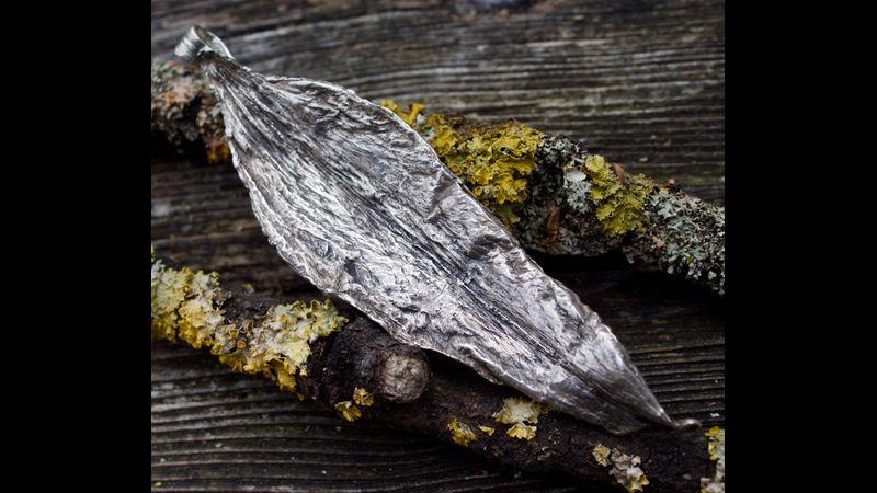 Silver paste on a petal