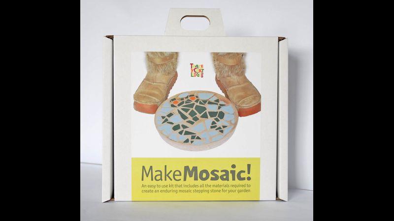 Frog Mosaic Stepping Stone Kit