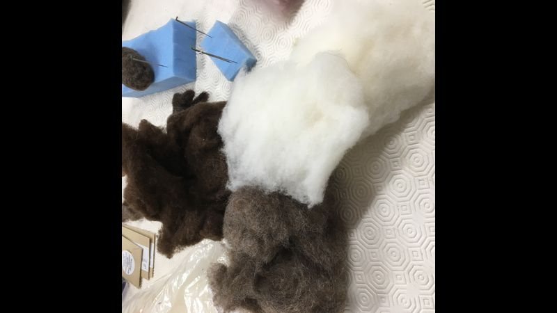 lots of wool to choose from